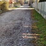 Ulica Sucha