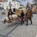 Zaprzęg konny na paradzie, w tle Urząd stanu cywilnego